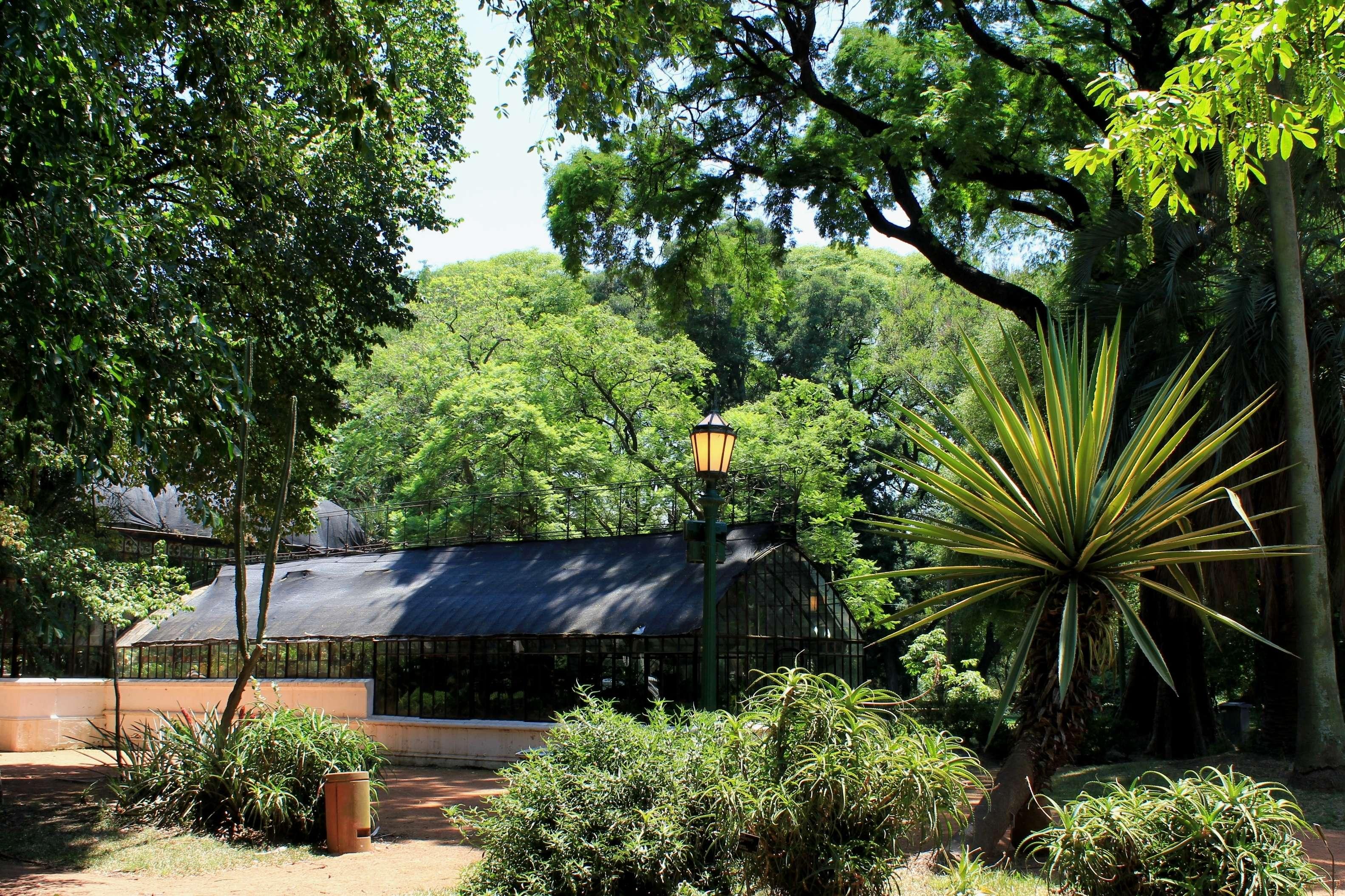 Free Botanical Garden Carlos Thays Pictures